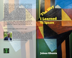 Juleus Ghunta The Way I Learned To Ignore