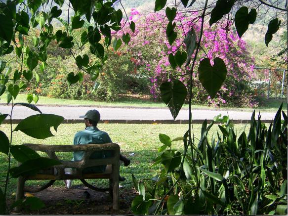 hope gardens